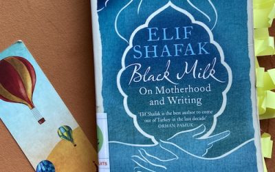 Book Review: Black Milk: On Motherhood and Writing