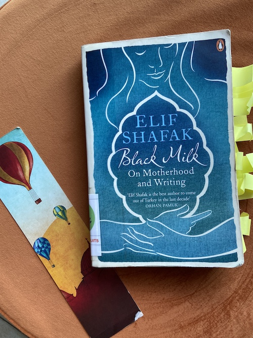 Black Milk by Elif Shafak book review Ranjani Rao motherhood and writing